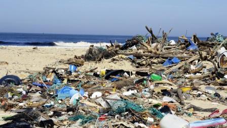 الأكياس البلاستيكية تعود للمشهد العام دون حسيب أو رقيب