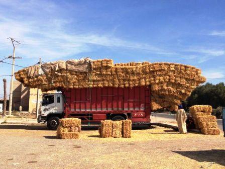 إختلافات جوهرية بين أرباب الشاحنات حول الحمولة