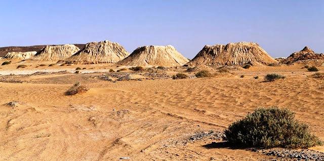 الخطارات تحت ضوء النقاش العلمي في ندوة بزاكورة