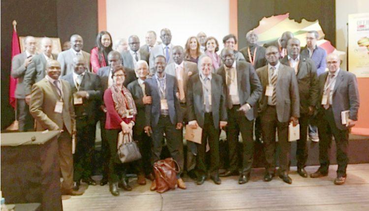 الدورة 16 لمعرض الصيدلة Officine Expo تختتم فعالياتها في مراكش تحت أضواء دولية