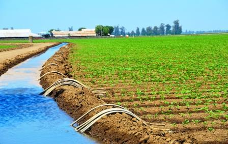 معرض مكناس يكشف أن الفلاحة قاطرة للتشغيل بجهة مراكش أسفي