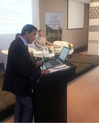 تصدير النباتات العطرية والطبية المغربية يحقق ما يقارب 620 مليون درهم