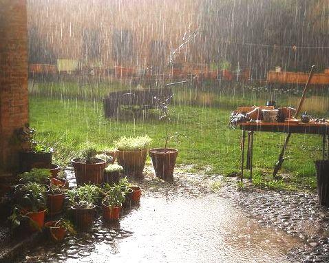 الطبيعة تتدخل لصالح أستراليا،والأمطار تحدّ من النيران