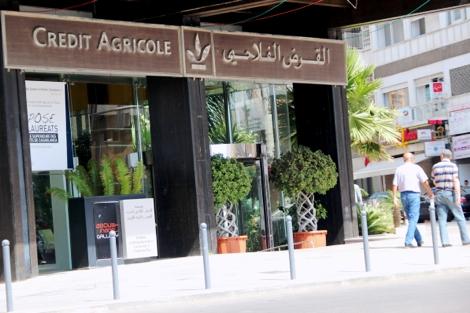 الجيل الأخضر: أية مواكبة من قبل مجموعة القرض الفلاحي للمغرب ؟