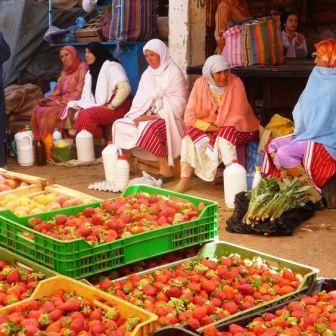 جهود مُواكبة لتعزيز التمكين الاقتصادي للنساء والفتيات المغربيات