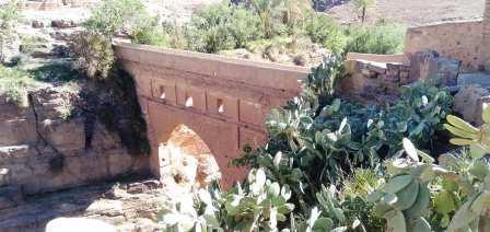 """واحات """"أنيسي"""" بجماعة أزناكة،في إقليم ورزازات تراث عالمي يتَطلَّبُ الإهتمام"""
