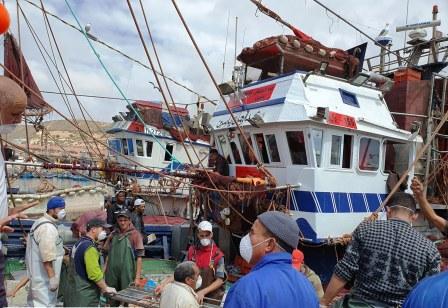 """البحارة يراسلون وزير الفلاحة والصيد البحري حول دعم جائحة """"كوفيد 19"""""""