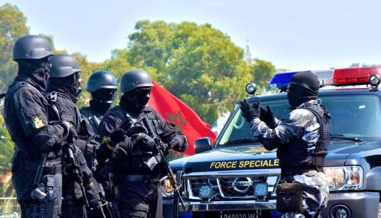 إجهاض محاولة تهريب 529 كلغ من مخدر الشيرا بمدينة العيون