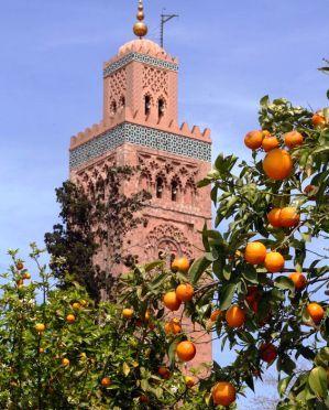 المدن العتيقة تشكل رهانا حقيقيا للجمعية المغربية للهندسة السياحية