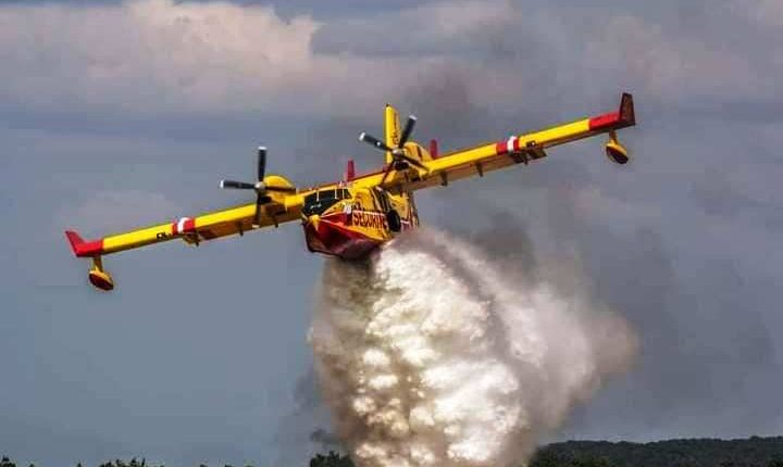 """حريق غابة """"سوكنا"""" في شفشاون تحت السيطرة،رغم تضرر الغطاء الغابوي"""